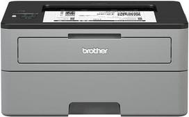 Brother HLL2350DW