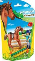 Playmobil Country - Horse Therapist 9259