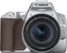 Canon EOS 250D + 18-55mm IS STM Kit Silver (Sidabrinis)